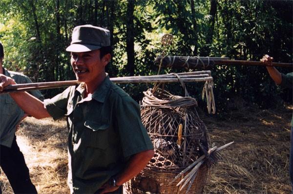 bird catcher