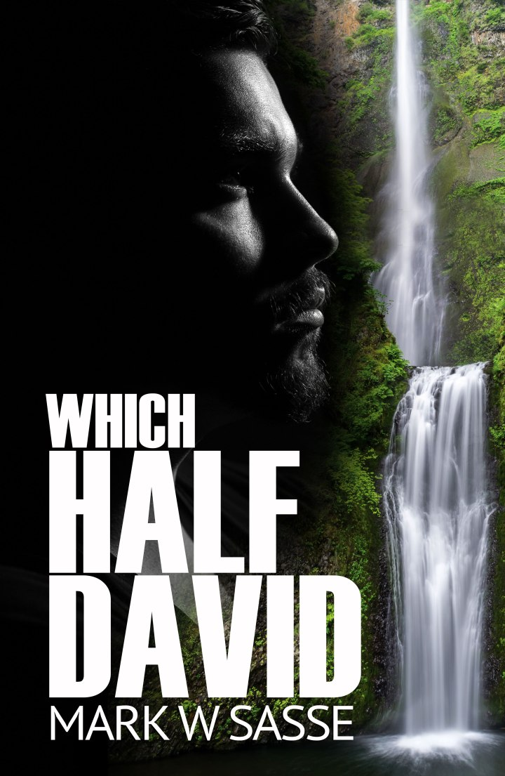 Which Half David: A Short Exerpt