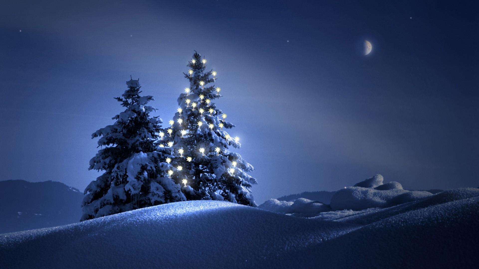 christmas-tree-on-snow-wallpaper-wide